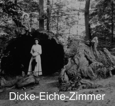 https://www.schwanen-nehren.de/wp-content/uploads/2016/07/dicke-Eiche-2-400x370.jpg