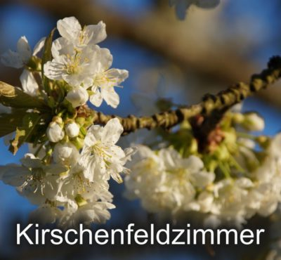 https://www.schwanen-nehren.de/wp-content/uploads/2016/07/kirschenfeld-1-400x370.jpg